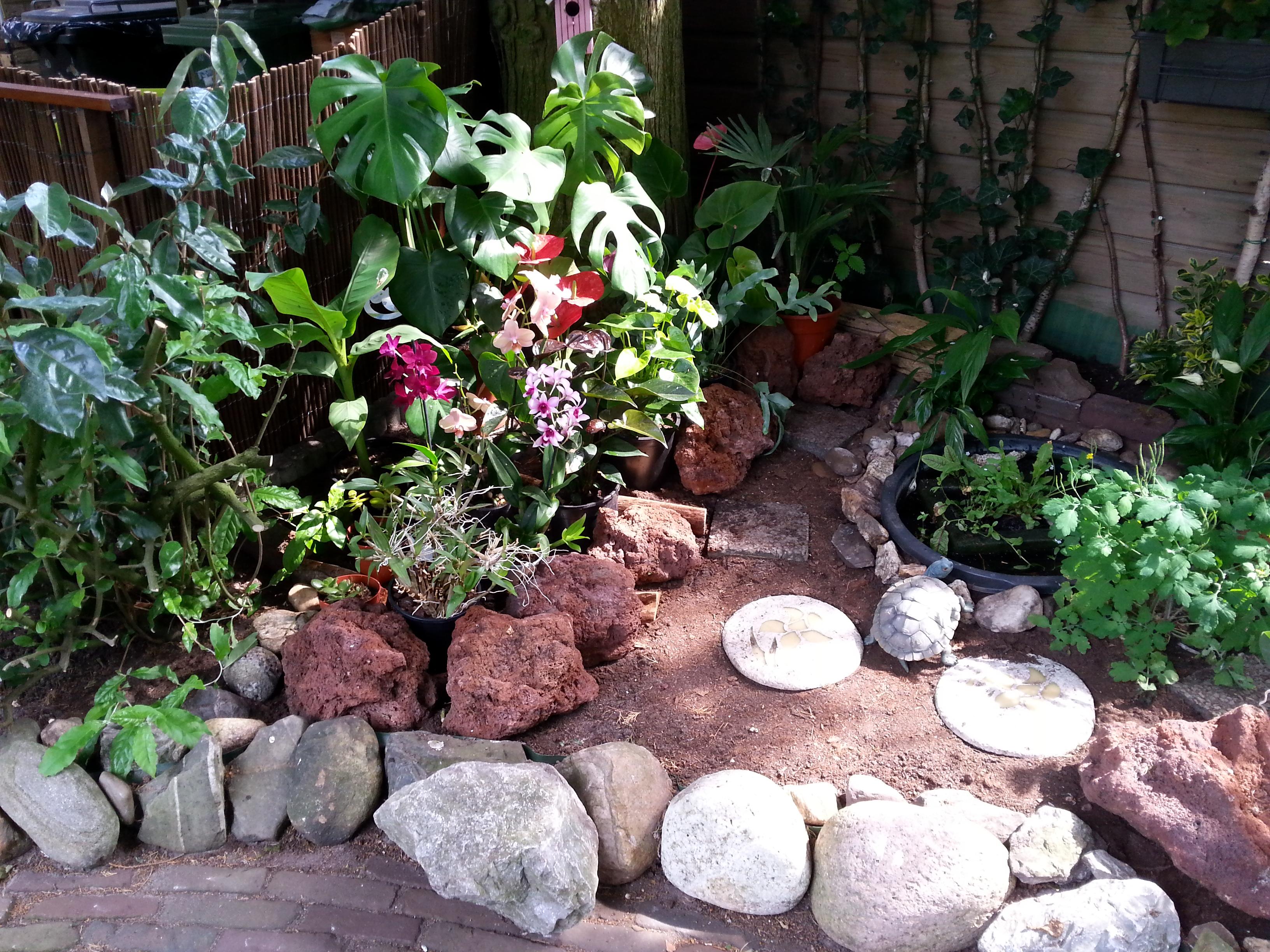 Exotische tuin for Tuin inrichten planten